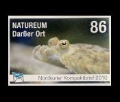 60 Jahre Deutsches Meeresmuseum Stralsund